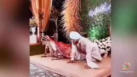 Bride and groom do push ups in wedding attire