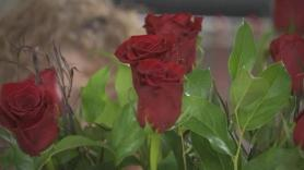 Flower shortage hits the 'wedding capital of the world'
